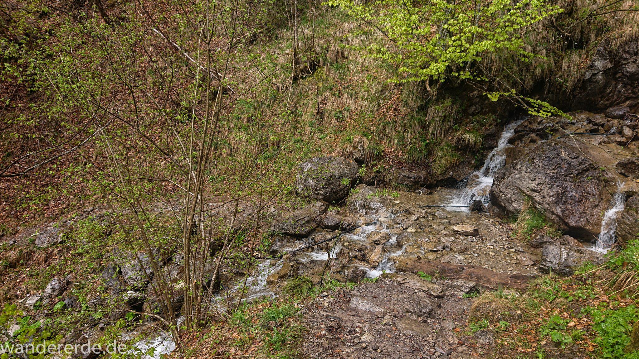 Wanderung Oberstdorf nach Gerstruben im Allgäu, Bayern, Wanderweg führt nach Bergbauerndorf Gerstruben über sehr empfehlenswerten aber steilen Weg Hölltobel entlang des Dieterbach mit Wasserfällen wieder abwärts