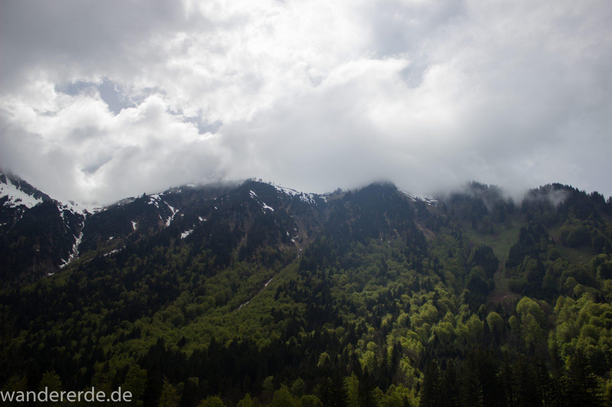 Wanderung Oberstdorf nach Gerstruben im Allgäu, Bayern, Wanderweg durch das Trettachtal, Aussicht auf schneebedeckte Berge, sattgrüne schöne Bäume, dichter Wald, Frühling in den Bergen