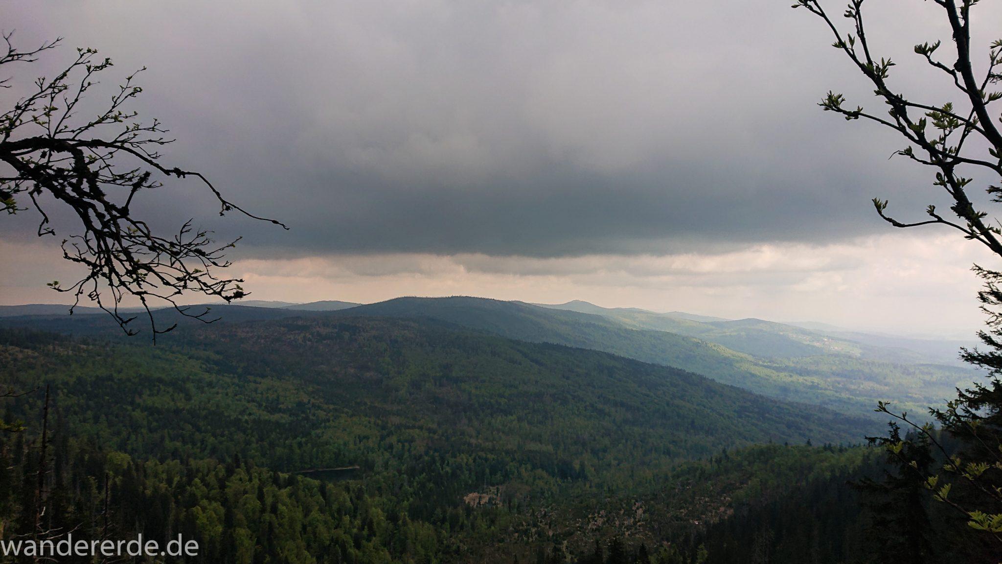 Wanderung Großer Rachel im Nationalpark Bayerischer Wald, Start Parkplatz Oberfrauenau, Aussicht auf riesiges Waldgebiet und Berge in der Ferne, schöner dichter Wald