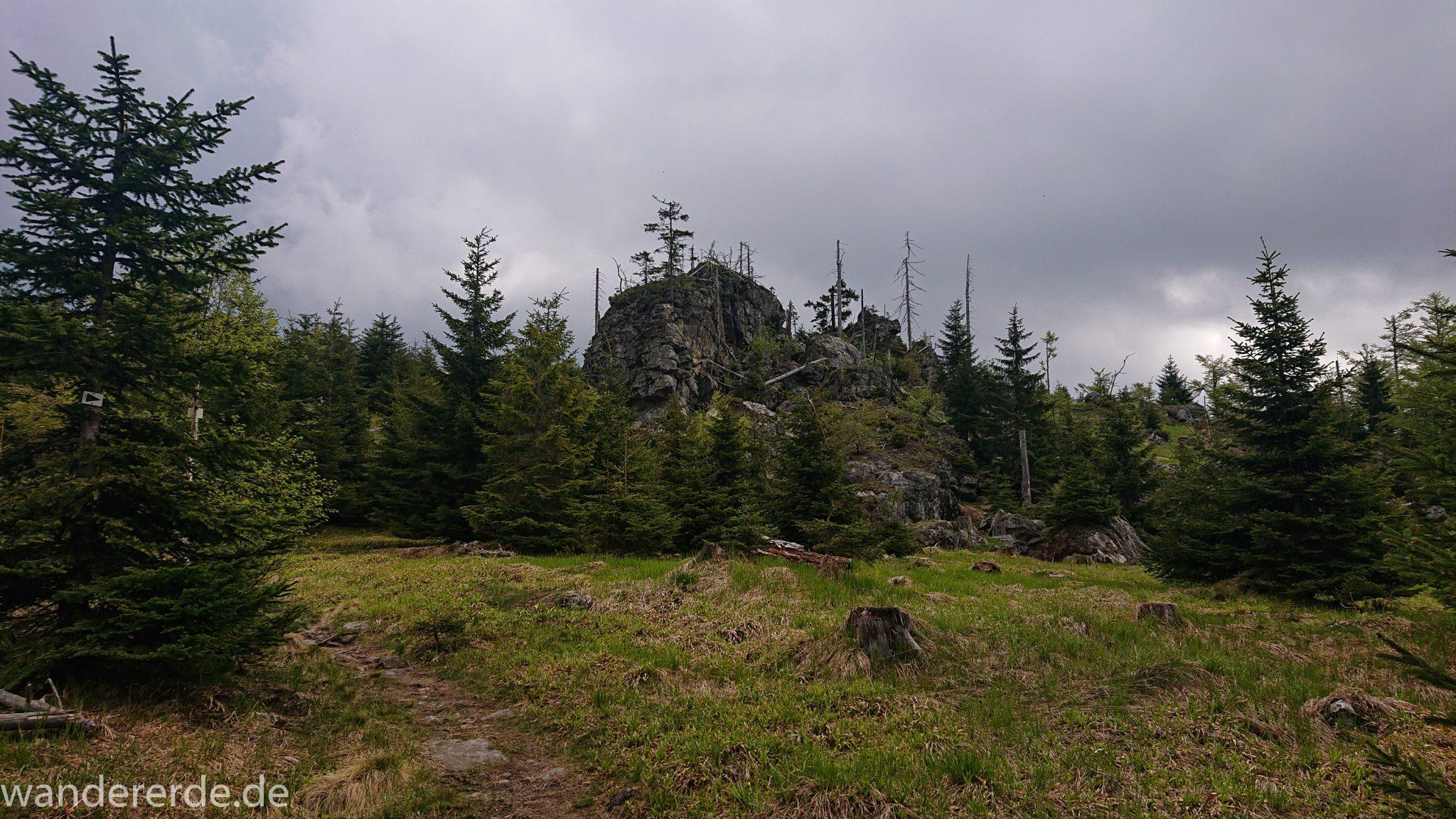 Wanderung Großer Rachel im Nationalpark Bayerischer Wald, Start Parkplatz Oberfrauenau, abwechslungsreicher naturbelassener Wanderweg auf den Berg Großer Rachel, schöner dichter Wald im Nationalpark Bayerischer Wald, Felsen, schmaler Wanderpfad, Wegmarkierung grünes Dreieck