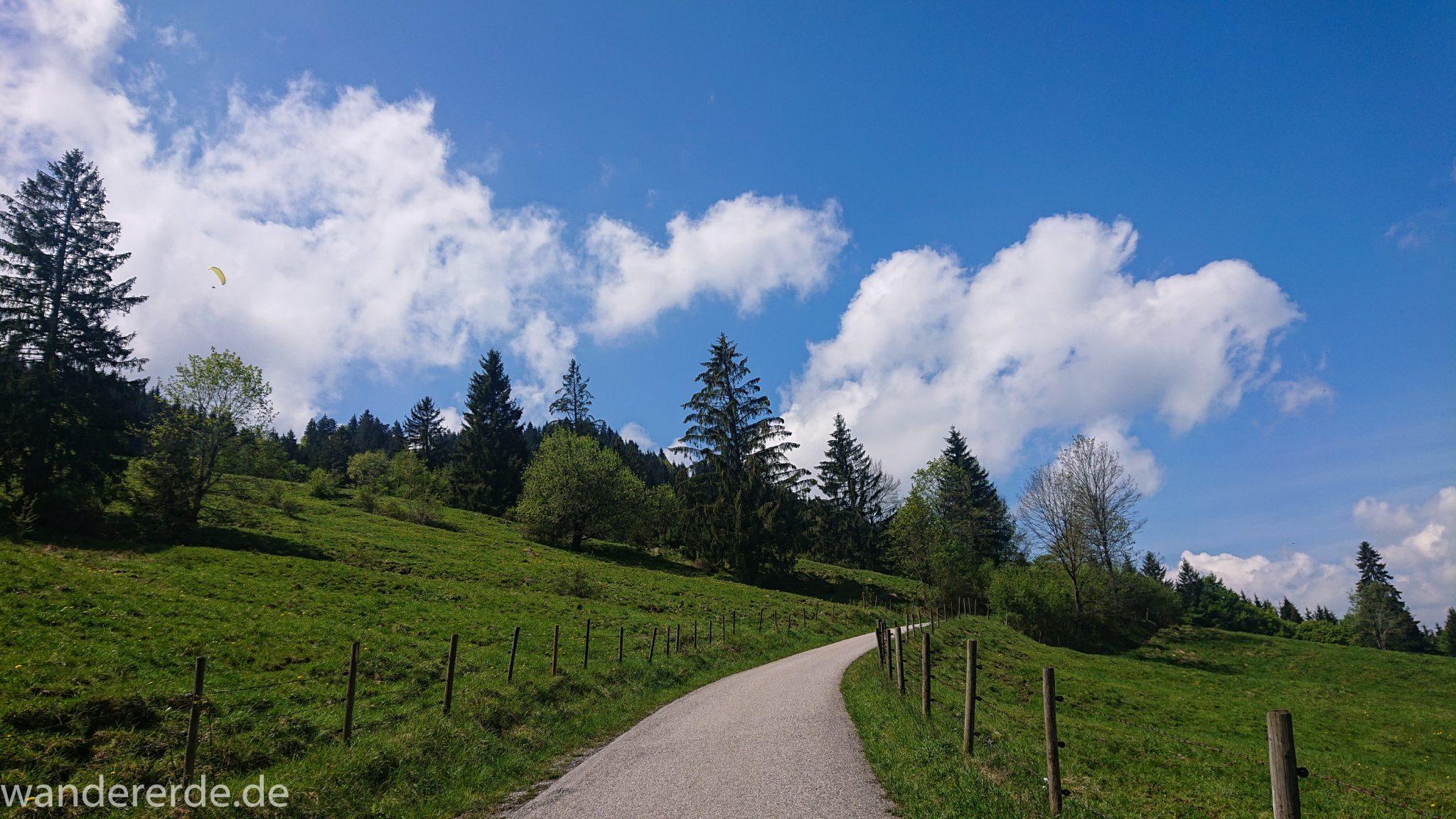 Wanderung zur Kenzenhütte in den Ammergauer Alpen, Weg entlang schmaler Straße, umgeben von grünem Weideland, Bäume, schöner Frühlingstag