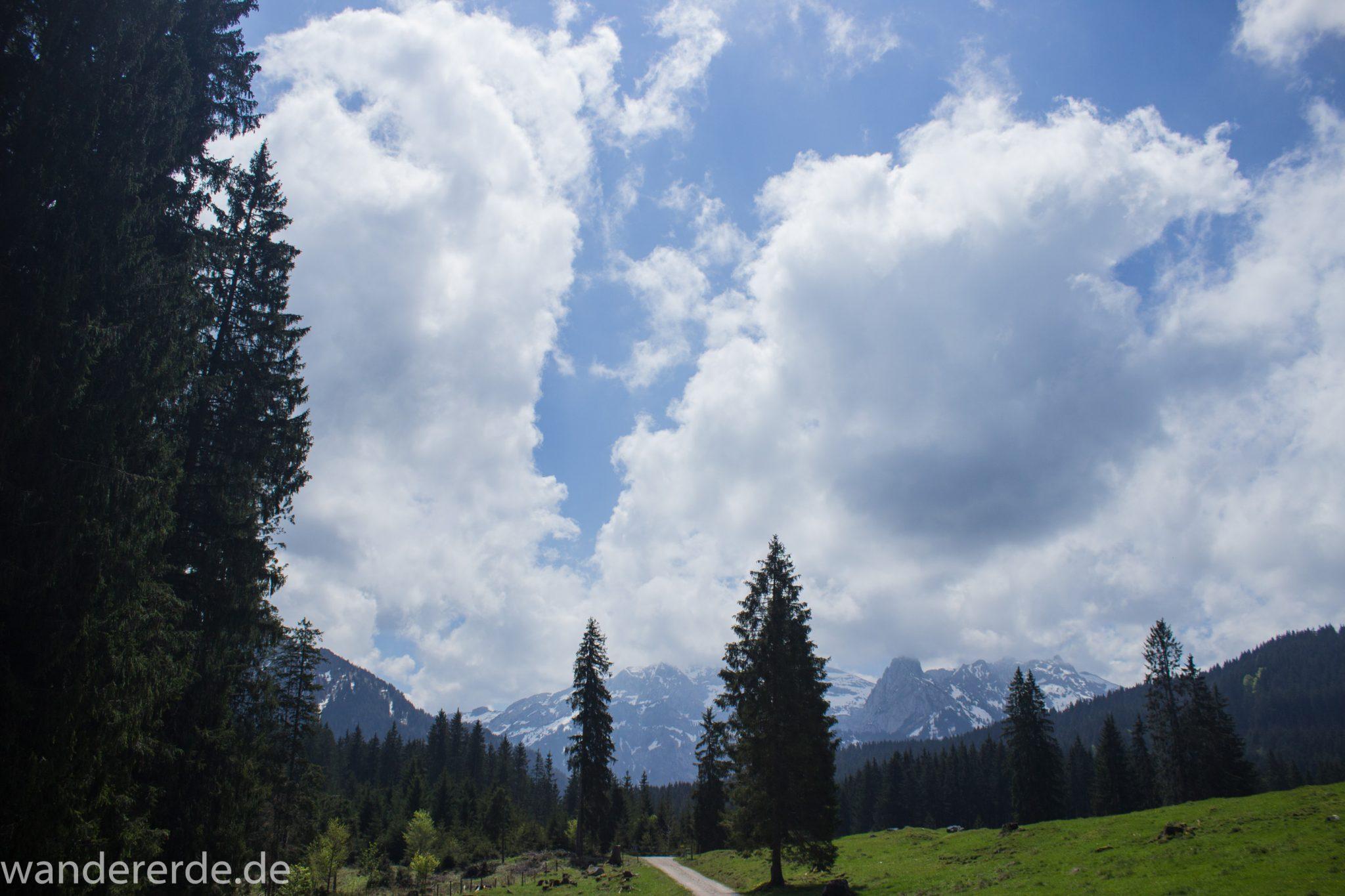 Wanderung zur Kenzenhütte in den Ammergauer Alpen, breiterer Kieselweg führt Richtung Berge, teils schneebedeckte Gipfel in Wolken gehüllt, Frühjahr in den bayerischen Alpen, dichter grüner Wald und saftige Wiesen