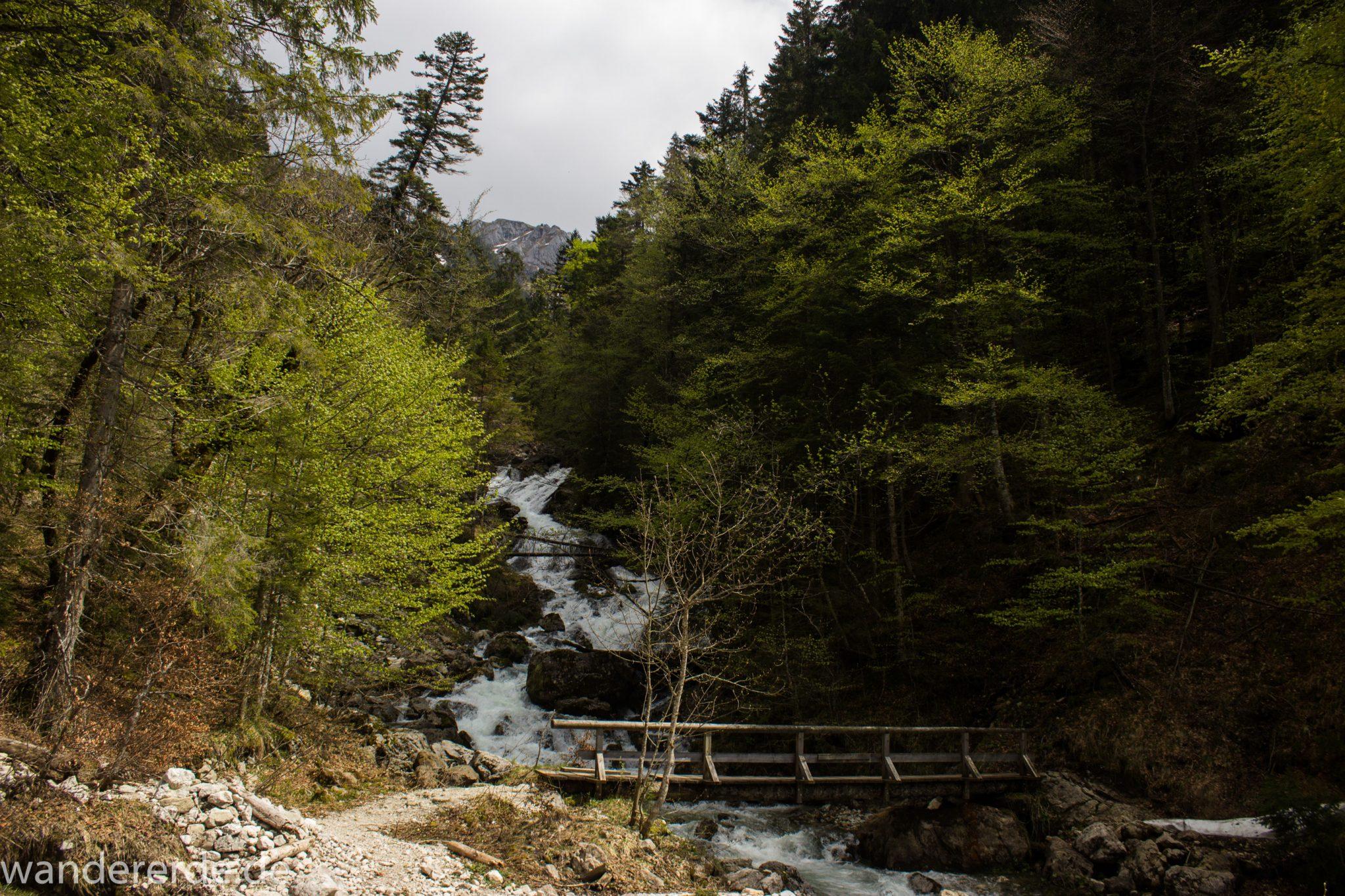Wanderung zur Kenzenhütte in den Ammergauer Alpen, Aussicht auf die Berge im Hintergrund, schmale kleine Brücke führt über schnell fließendem Bach, Frühjahr in den bayerischen Alpen, dichter grüner Wald und saftige Wiesen, Wanderweg oftmals am schönen, idyllischem Bach entlang