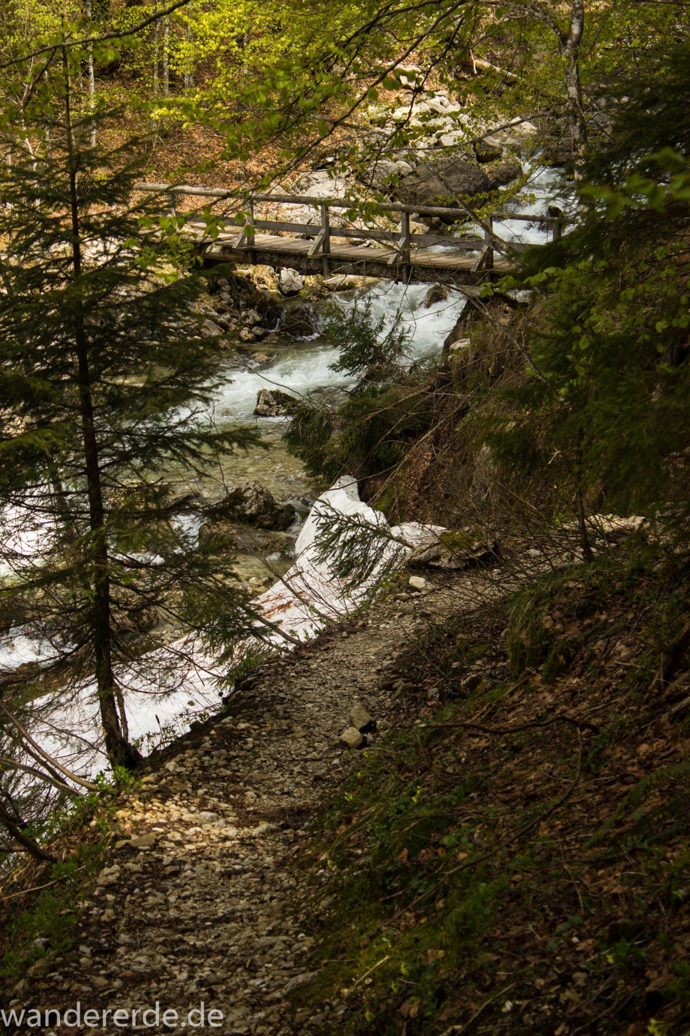 Wanderung zur Kenzenhütte in den Ammergauer Alpen, schmale kleine Brücke führt über schnell fließendem Bach, Frühjahr in den bayerischen Alpen, dichter grüner Wald und saftige Wiesen, Wanderweg oftmals am schönen, idyllischem Bach entlang