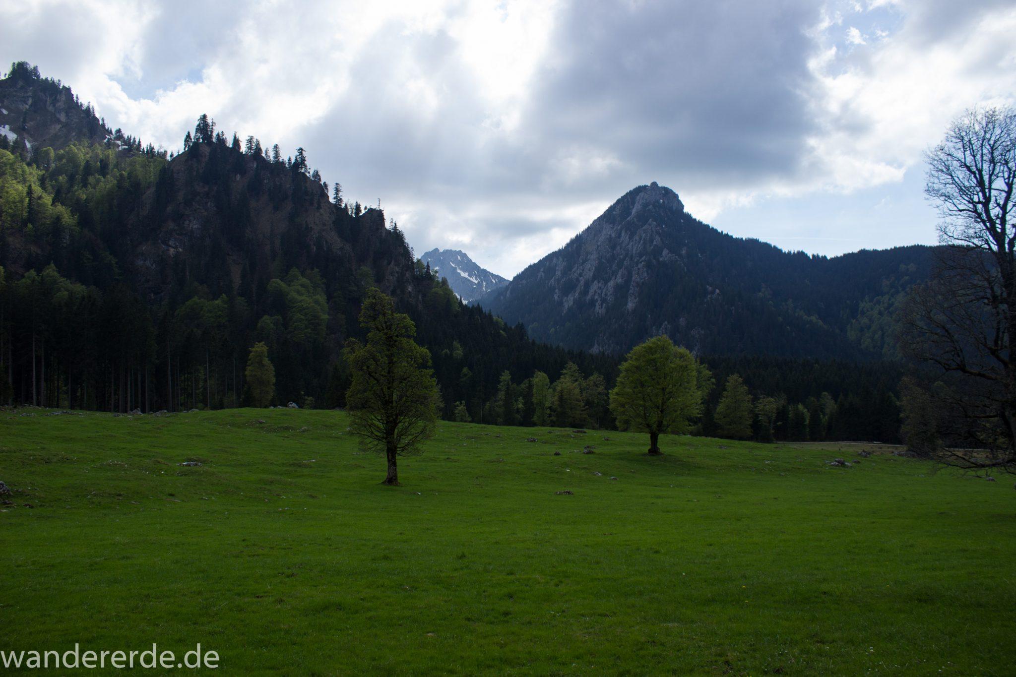 Wanderung zur Kenzenhütte in den Ammergauer Alpen, Aussicht auf die teils schneebedeckten Berge, Frühjahr in den bayerischen Alpen, Wanderweg führt entlang dichtem grünen Wald und saftigen Wiesen