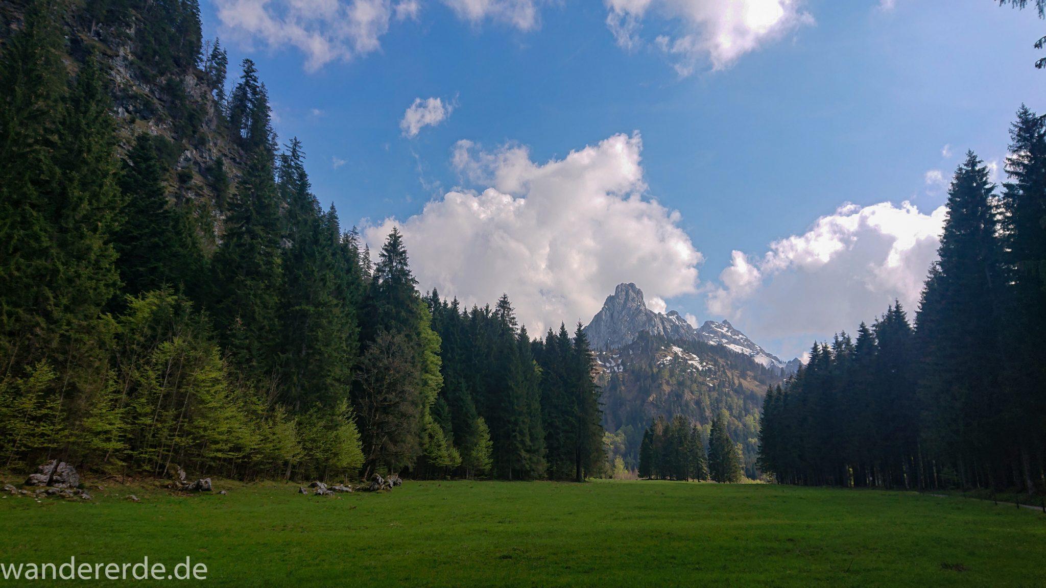Wanderung zur Kenzenhütte in den Ammergauer Alpen, Aussicht auf die teils schneebedeckten Berge, Frühjahr in den bayerischen Alpen, Wanderweg führt entlang dichtem grünen Wald und saftigen Wiesen, Mischwald