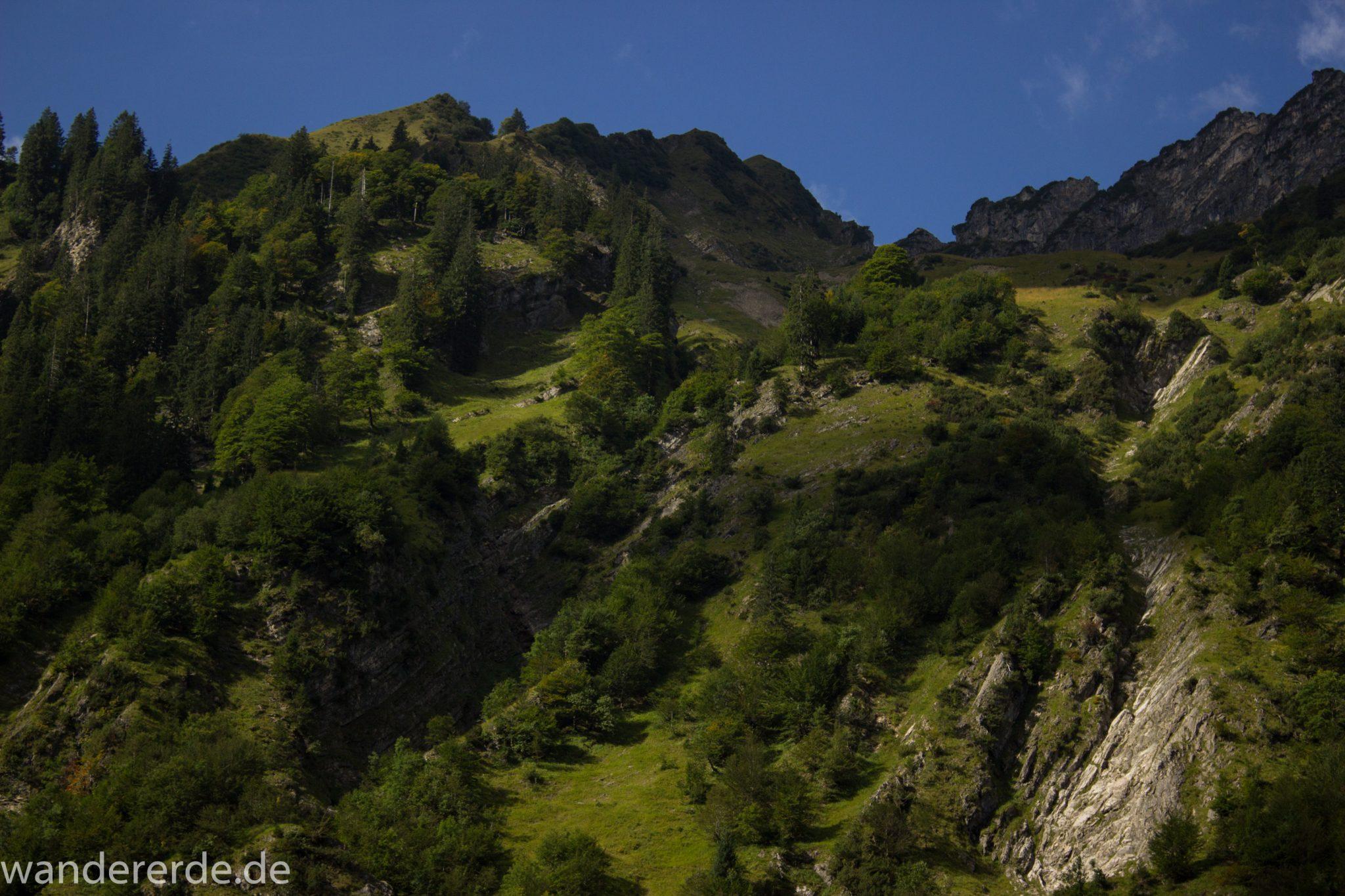 Alpenüberquerung Fernwanderweg E5 Oberstdorf Meran, 1. Etappe von Oberstdorf zur Kemptner Hütte, Wanderweg von Oberstdorf zur Spielmannsau führt entlang saftig grüner Wiesen im Allgäu umgeben von grünem Wald, Aussicht auf die Berge im Allgäu, Bayern