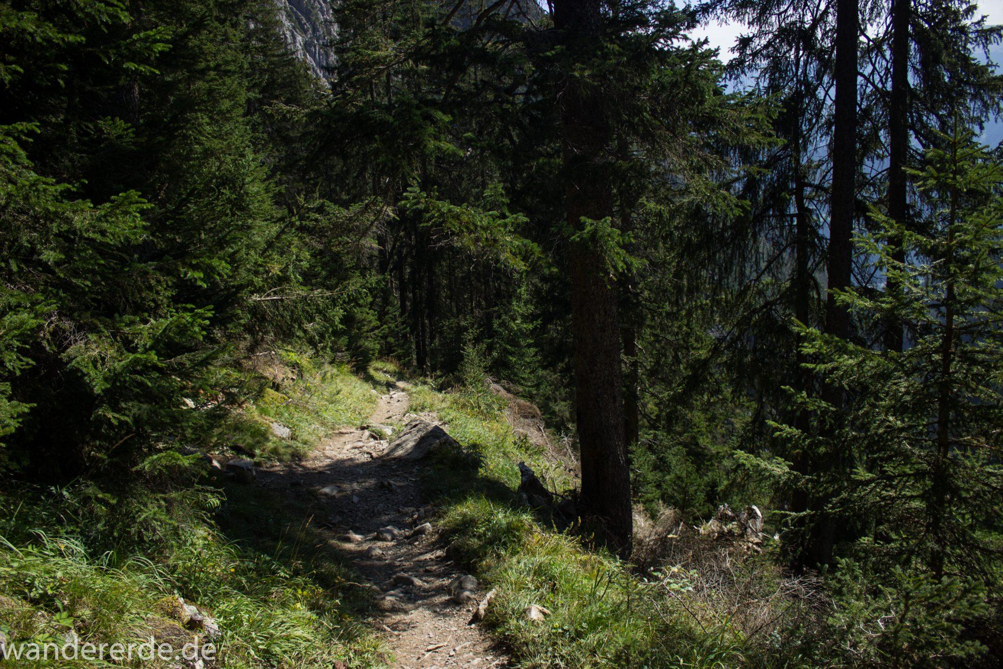 Alpenüberquerung Fernwanderweg E5 Oberstdorf Meran, 3. Etappe von Memminger Hütte zur Skihütte Zams, nach Erreichen der Seescharte folgt ein sehr langer Abstieg auf schmalem Wanderpfad Richtung Zams durch das Zammer Loch, Abschnitt  mit saftig grüner Vegetation, viele Bäume spenden Schatten, Wanderweg ist schmal und zunehmend wieder steiler