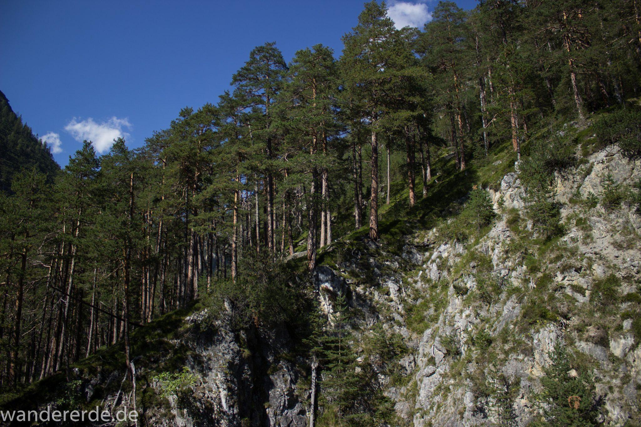 Alpenüberquerung Fernwanderweg E5 Oberstdorf Meran, 3. Etappe von Memminger Hütte zur Skihütte Zams, nach Erreichen der Seescharte folgt ein sehr langer Abstieg auf schmalem Wanderpfad Richtung Zams durch das Zammer Loch, Abschnitt  mit saftig grüner Vegetation, ab und zu Schatten