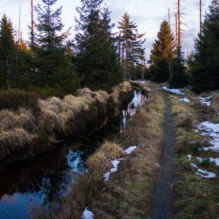Wanderung im Harz bei Torfhaus: Wolfswarte, Siebertal und Oberharzer Wasserregal in Niedersachsen, UNESCO Weltkulturerbe Oberharzer Wasserregal, Clausthaler Flutgraben mit schmalem Wanderweg umgeben von Nadelwäldern, Schneereste schmelzen, untergehende Sonne zaubert schönes Licht